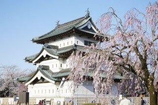弘前公園の写真