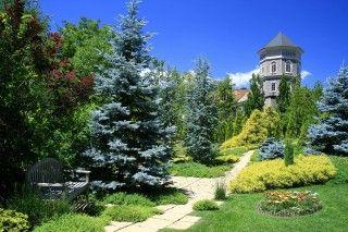 ラ・カスタ ナチュラル ヒーリング ガーデンの写真