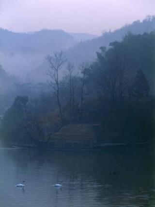 金清自然公園の写真