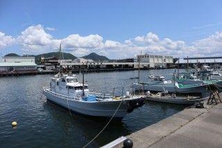 沼津港の写真