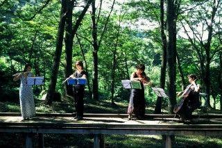 稲山ケヤキの森の写真