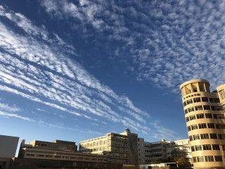 「P.N.Yoshikin」さんからの投稿写真@帝塚山大学 学園前キャンパス