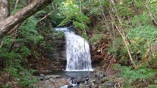 竪琴の滝の写真