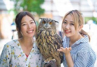 掛川花鳥園の写真