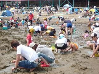 的形海水浴・潮干狩場の写真