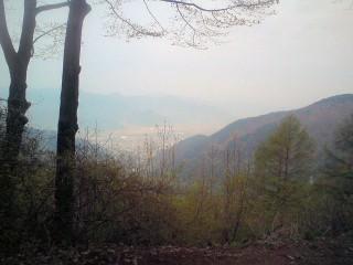 太郎山の写真