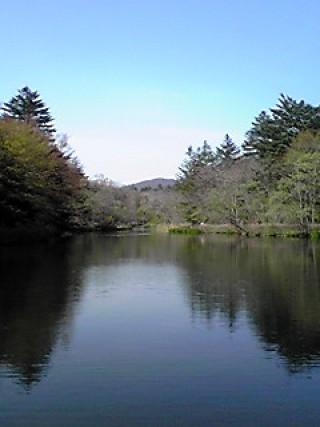 雲場池の写真