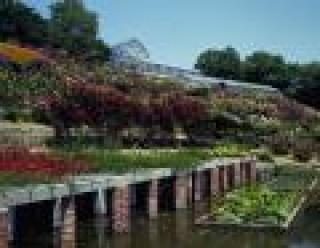 半田山植物園の写真