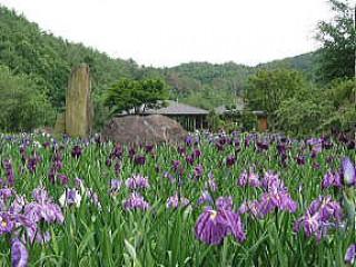 美咲花山園の写真