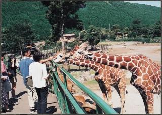 伊豆アニマルキングダムの写真