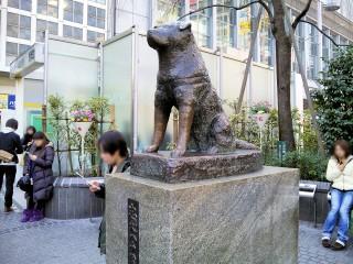 忠犬ハチ公像の写真